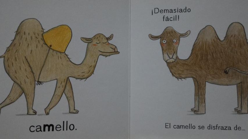 El dromedario lo tiene muy fácil para disfrazarse de camello